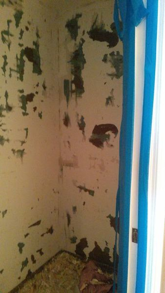 Wallpaper Removal and Painting in Deerfield Beach, Florida (1)
